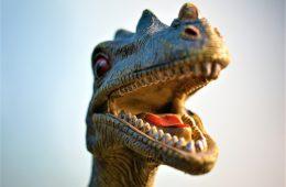 dinosaurus feest